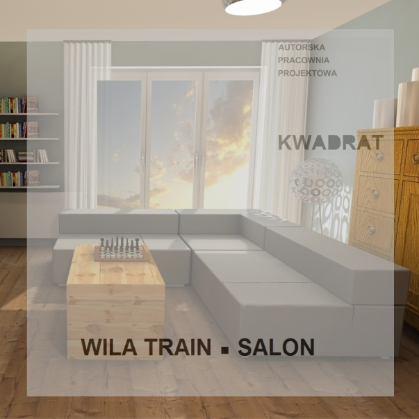 TRAIN SALON