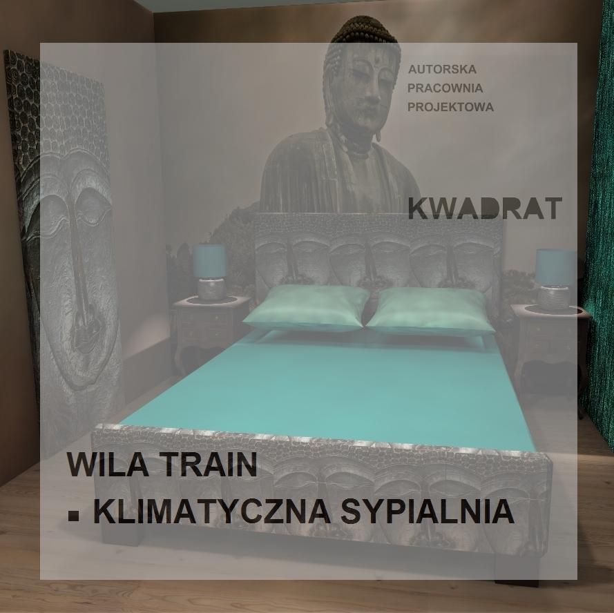 TRAIN SYPIALNIA